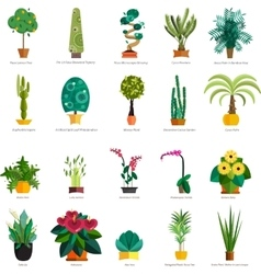 Set of indoor tree home plants in pots vector
