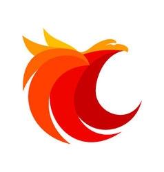 eagle abstract logo design vector image