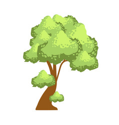 Tree with lush green foliage element of a vector