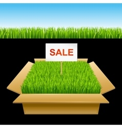 Open box with green grass sale vector