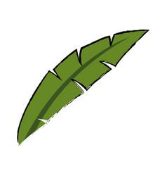 Leave foliage nature botanical decoration vector