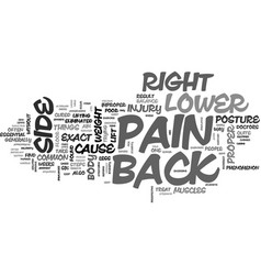back pain on lower right side easily curable text vector image vector image