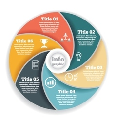 Business circle info graphic diagram vector image