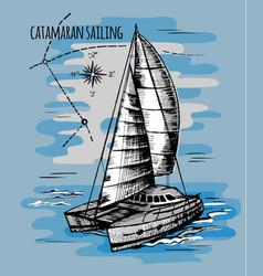 catamaran sailboat regatta summe vector image vector image