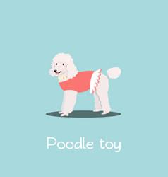 Charming poodle toy pet design vector