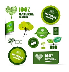 Natural Product Green Labels - Tags - Stickers Set vector image vector image