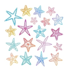 Doodle set of starfishes vector image