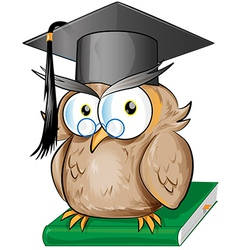 Wise owl cartoon vector