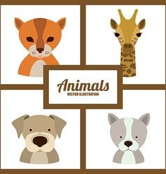 Animals design vector