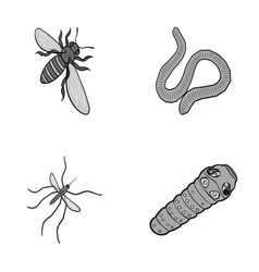 Arthropods insect mosquito beeearth worm vector