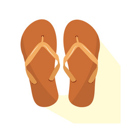 isolated pair of sandals vector image vector image