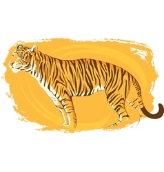 Tiger on a bright yellow background zeal vector