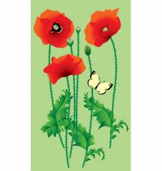 poppy vector image