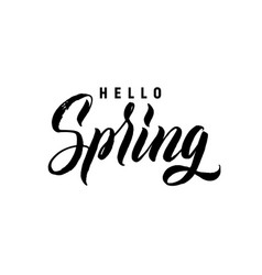 Hello spring hand lettering black letters white vector