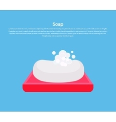 Soap Concept Banner vector image vector image