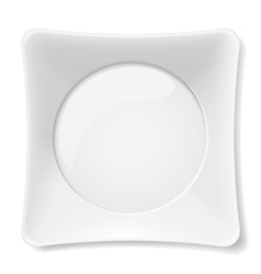 White plate vector image vector image