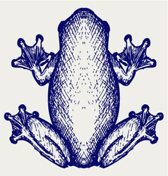 Frog sketch vector image