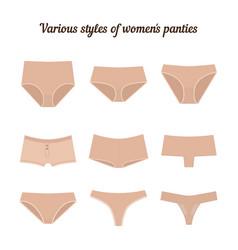 Various styles of women panties vector