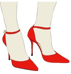 The beautiful shoes of an elegant woman vector image