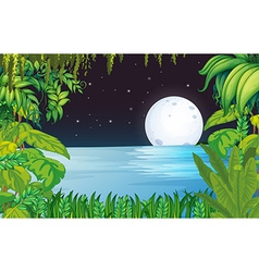 A lake in the forest under the bright fullmoon vector