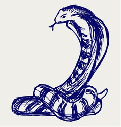 Snake sketch vector image vector image
