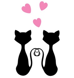 Cats pink vector