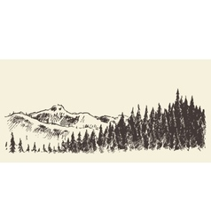 Hand drawn landscape fir forest and meadow sketch vector