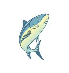 fish tuna vector image