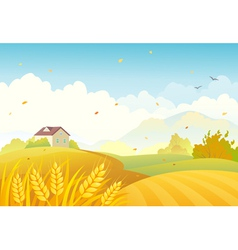 Fall fields vector