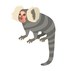 small monkey icon cartoon style vector image