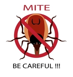 Symbol parasite warning sign Ticks be careful vector image vector image