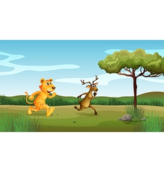 Wilderness tiger deer vector