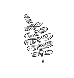 Branch zentangle for coloring vector
