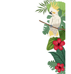Cockatoo card with hibiscus leaves jungle vector