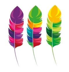 Feathers multicolored carnival icon vector