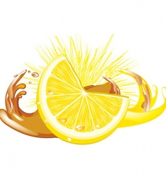 juice splash vector image