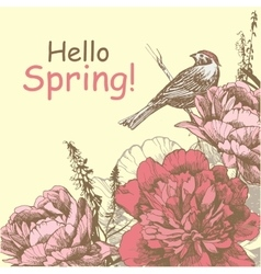 Hello spring background with peony and bird peony vector