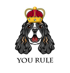 cocker spaniel wearing in crown king dog vector image vector image