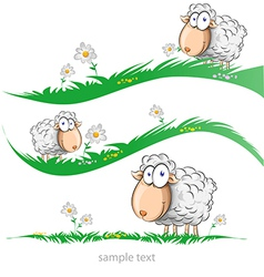Sheep cartoon set on meadow vector