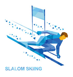 slalom skiing cartoon skier running downhil vector image vector image