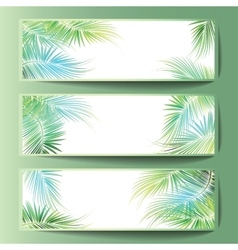 Banners with the palm tree branches vector