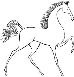 Hand drawn horse vector