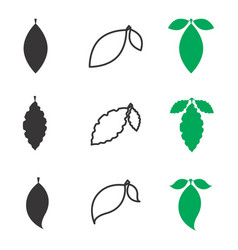 Leaf icon or element isolated vector