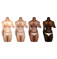 women bodies templates vector image