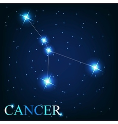 the cancer zodiac sign of the beautiful bright vector image
