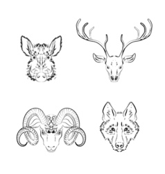 Set of animals sketches deer vector