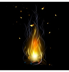 bonfire with sparks vector image