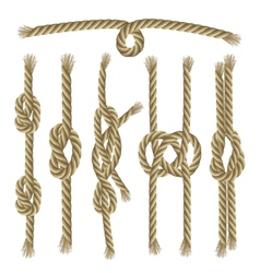 Knots collection set vector