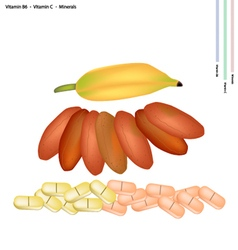 Dried bananas with vitamin b6 and vitamin c vector