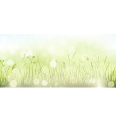 Green spring grass sky bokeh background vector image